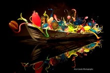 Jim Canole-Chihuly In Boston 2