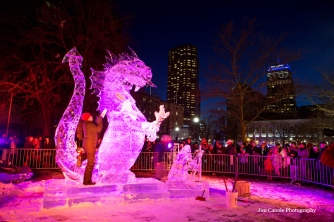 First Night Boston 2015-5